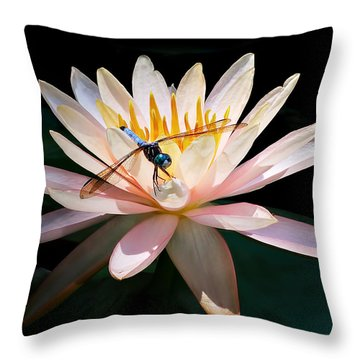 Lily And Dragon Throw Pillow