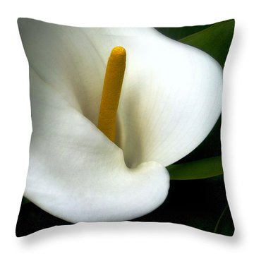 Lily Bright Throw Pillow