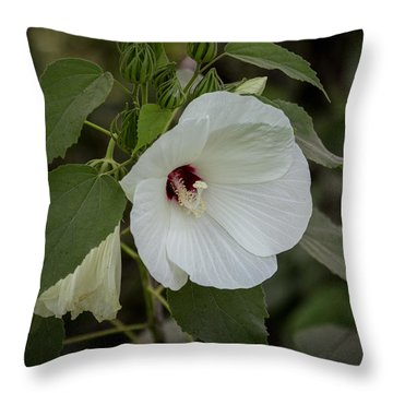 Lily Throw Pillow by Gregory Daley  PPSA