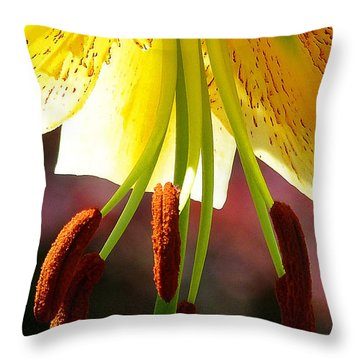 Lily Chandelier Throw Pillow