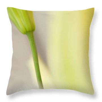 Lily Delight. Floral Abstract Throw Pillow by Jenny Rainbow