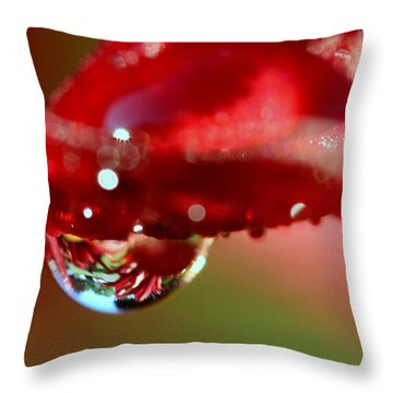 Throw Pillow featuring the photograph Lily Droplets by Suzanne Stout