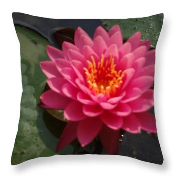 Throw Pillow featuring the photograph Lily Flower In Bloom by Michael Porchik