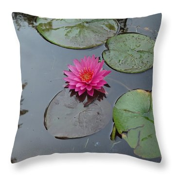 Lily Flower Throw Pillow by Michael Porchik