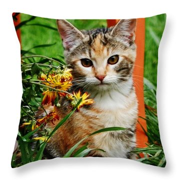 Throw Pillow featuring the photograph Lily Garden Cat by VLee Watson