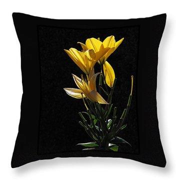Lily Light Throw Pillow
