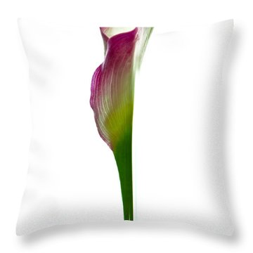 Throw Pillow featuring the photograph Lily by Jonathan Nguyen