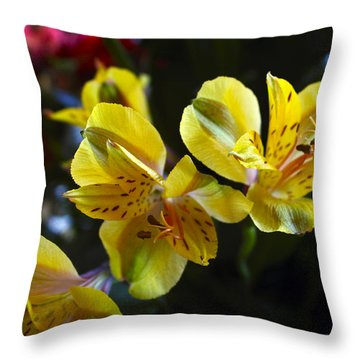 Lily Of The Incas Throw Pillow by Kurt Van Wagner