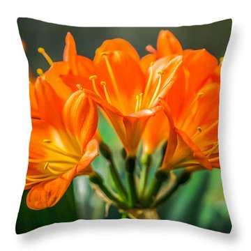 Lily Of The Morning Throw Pillow