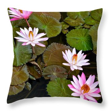 Lily Pad Haven Throw Pillow by Frozen in Time Fine Art Photography