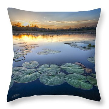 Lily Pads In The Glades Throw Pillow by Debra and Dave Vanderlaan