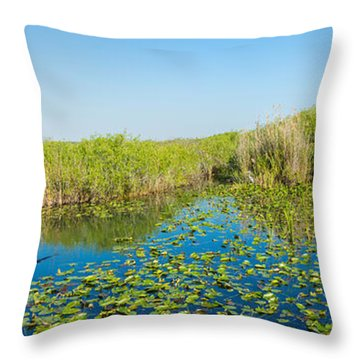 Lily Pads In The Lake, Anhinga Trail Throw Pillow