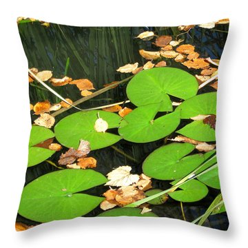 Lily Pads Throw Pillow by Mary Bedy