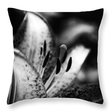 Lily Surprise Throw Pillow by Shelly Gunderson