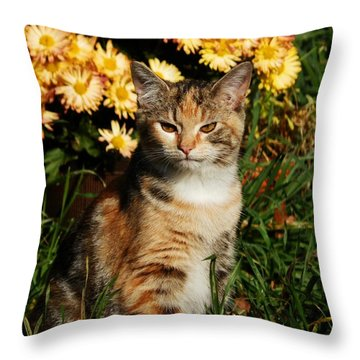 Lily With Harvest Mums Throw Pillow by VLee Watson
