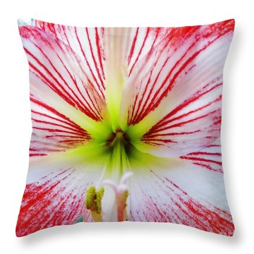 Lily Wow Throw Pillow