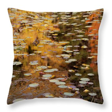 Lilypads And Reflection-h Throw Pillow