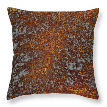 Limbinosity Throw Pillow by Jo-Anne Gazo-McKim