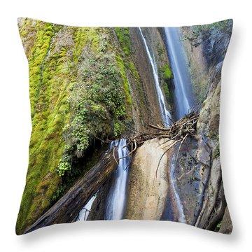 Limekiln State Park Throw Pillow by Jenna Szerlag