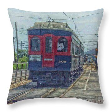 Limited 309 Throw Pillow by Thomas Woolworth
