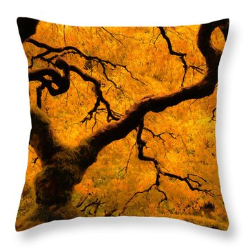 Limned In Light Throw Pillow by Don Schwartz