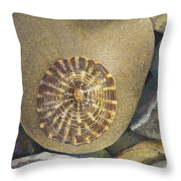 Limpet Shell Throw Pillow