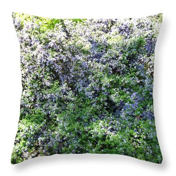 Lincoln Park In Bloom Throw Pillow by David Trotter