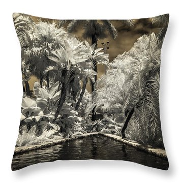 Lincoln Road Pool Throw Pillow
