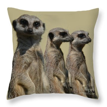 Line Dancing Meerkats Throw Pillow