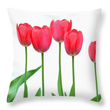 Throw Pillow featuring the photograph Line Of Tulips by Steve Augustin