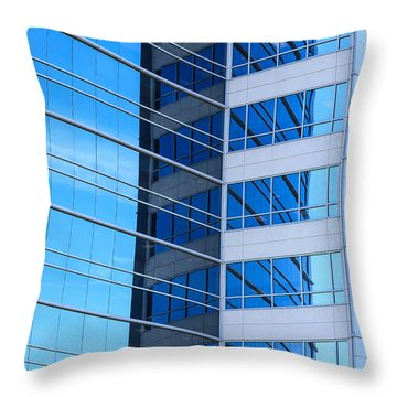 Linearis Throw Pillow