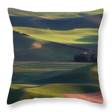 Lines And Shadows Throw Pillow by Ryan Manuel