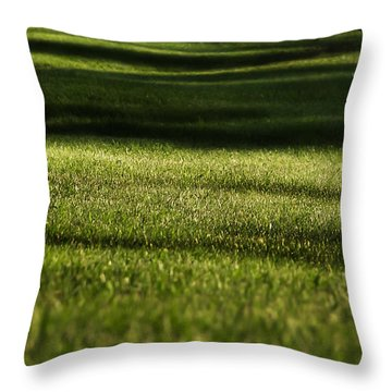 Lines Throw Pillow by Melissa Petrey