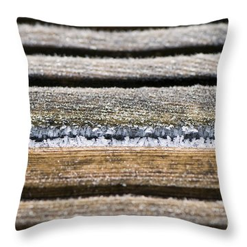 Lines Of Ice Throw Pillow by Anne Gilbert