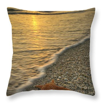 Lines Of The Sea Throw Pillow