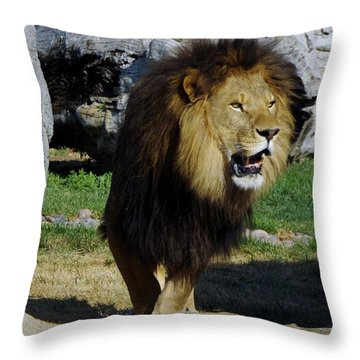 Lion 2 Throw Pillow