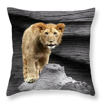 Lion Cub Throw Pillow
