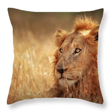 Lion In Grass Throw Pillow by Johan Swanepoel