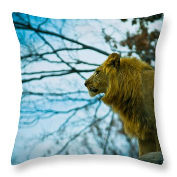 Lion King Throw Pillow by Sara Frank