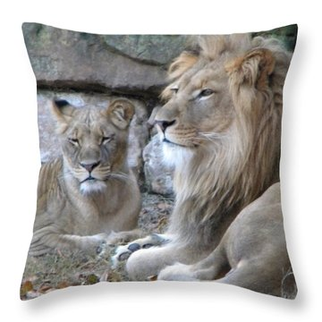 Throw Pillow featuring the photograph Lion Love by Amanda Eberly-Kudamik