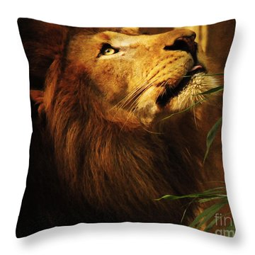 Throw Pillow featuring the photograph The Lion Of Judah by Olivia Hardwicke