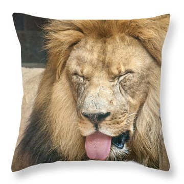 Lion Sticking Out Tongue Throw Pillow