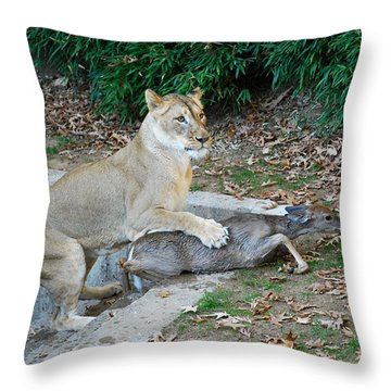 Throw Pillow featuring the photograph Lioness And Deer by Eva Kaufman