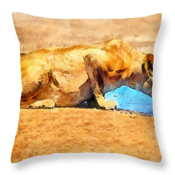 Lioness Drinking Throw Pillow by George Rossidis