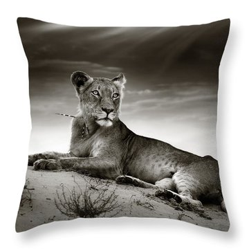 Lioness On Desert Dune Throw Pillow
