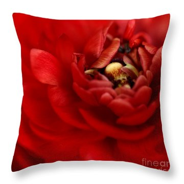 Lip Smackin Throw Pillow by Beve Brown-Clark Photography
