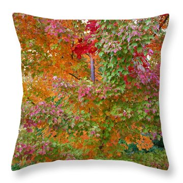 Liquid Amber Magic Throw Pillow by Michele Myers