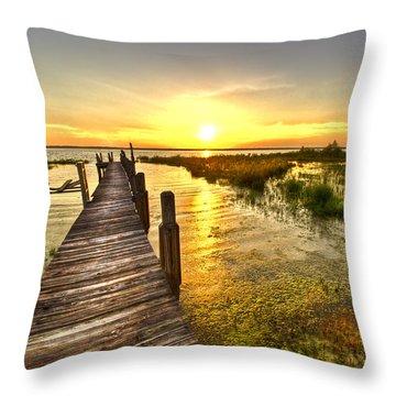 Liquid Gold Throw Pillow by Debra and Dave Vanderlaan