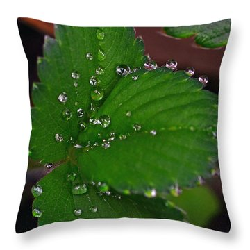 Liquid Pearls On Strawberry Leaves Throw Pillow by Lisa Phillips