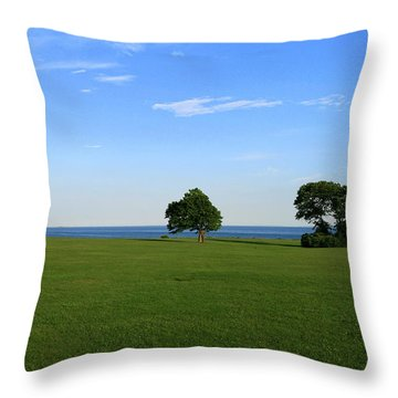 Listening To The Breeze  Throw Pillow by Neal Eslinger